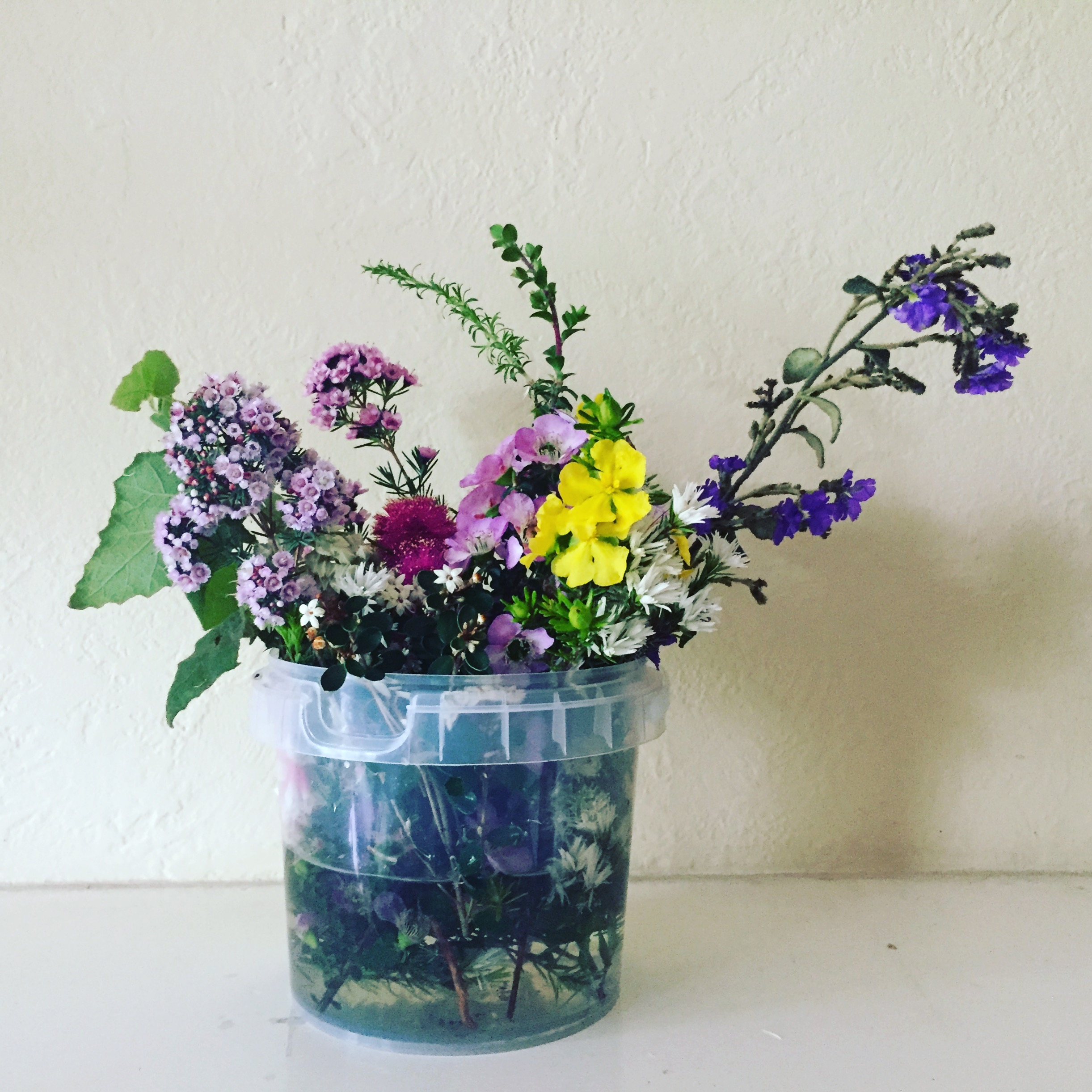 Native flowers, plastic bucket, white background | See more at www.diywoman.net