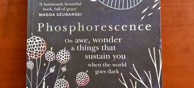 A book titled Phosphorescence by Julia Baird